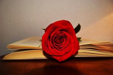 book-2287584_1280