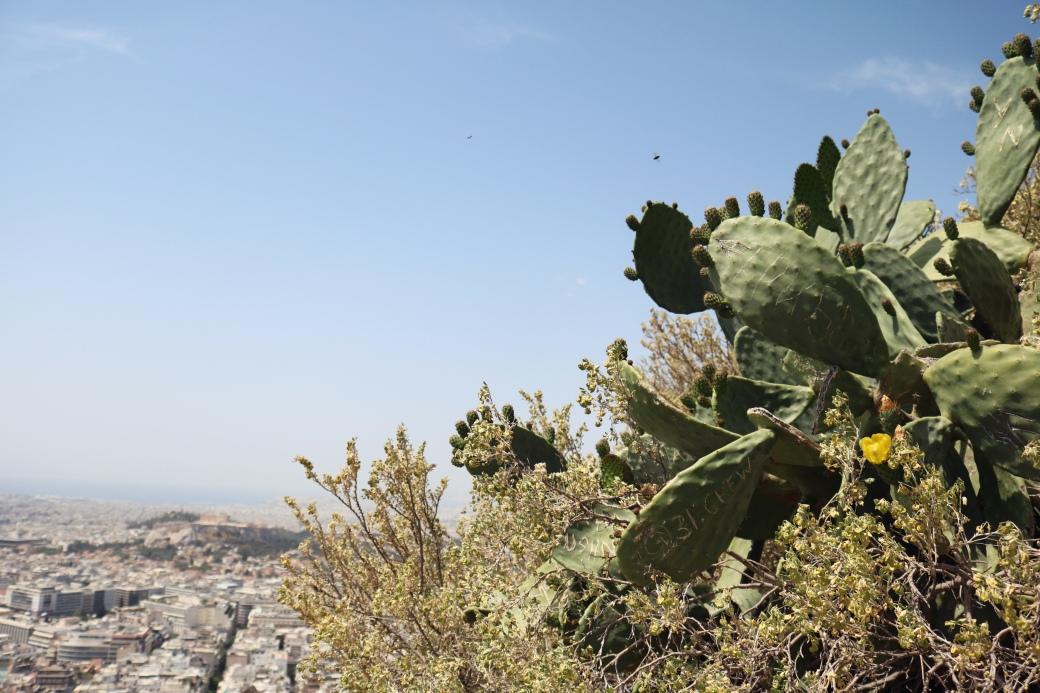 Athènes en 3 jours Mont Lycabette